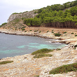 Isole-Sicilia